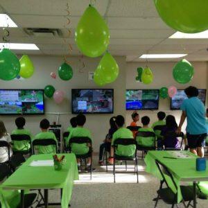 Genius Owl Minecraft Birthday Party Location