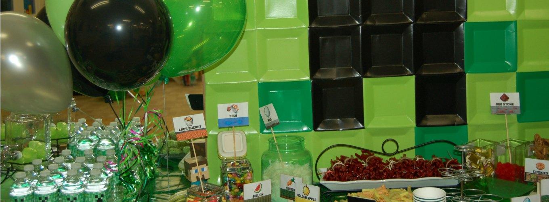 Genius Owl Minecraft Birthday Parties in Toronto, Richmond Hill, Markham, Vaughan and York Region