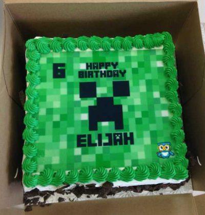 Genius Owl Minecraft Parties cake