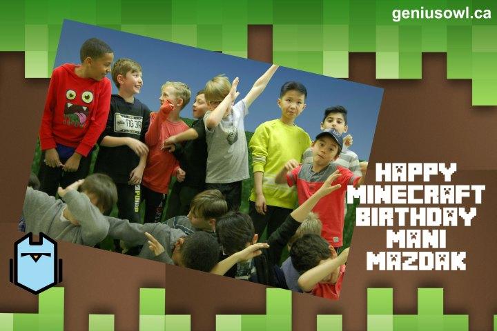 Genius Owl Minecraft birthday party