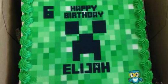 Genius Owl Minecraft Parties cake